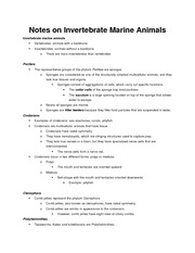 Notes on Invertebrate Marine Animals