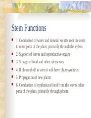 Stem_Functions.ppt