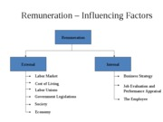 Remuneration- Influencing  factors & challenges
