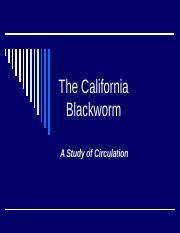 The California Blackworm 2016 (1)