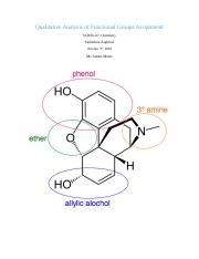 Qualitative Analysis of Functional Groups Assignment.docx