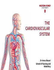 The Cardiovascular system(11).pptx