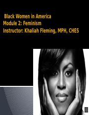Black Women in America module 2 feminism