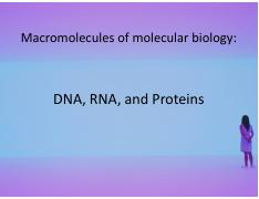 Introduction to Molecular Biology-DNARNA.pdf