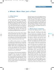 02 Wheat - more than just a plant .pdf