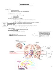 ANA6205 - Basal Ganglia Summary