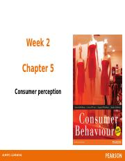 Ch05_Consumer Perception.pptx
