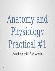 Anatomy and Physiology Practical #1.pptx