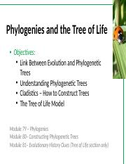 BIOL1020 Lecture 2 - Phylogenies.pptx