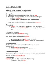 Atoms vs. Ions Worksheet - Answer Key
