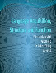 Language Acquisition, Structure, and Function