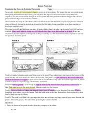succession_worksheet.pdf - Biology Worksheet Examining the ...