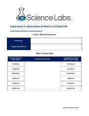 mitosis Experiment_1_Data_Tables_and_Assessment (4).docx