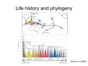 5-History of Life on Earth and Tree Thinking
