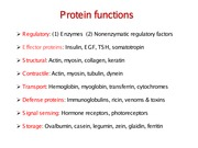 Notes on Protein Function