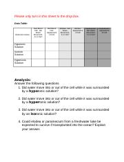 3.10 Virtual Lab Worksheet.docx
