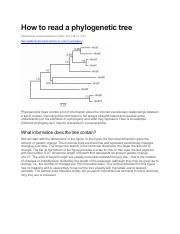 How to read a phylogenetic tree.pdf
