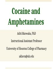 Cocaine and Amphetamines Fall 2016 Notes.pptx