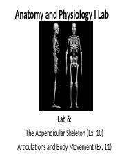 Lab 6. Appendicular Skeleton and Articulations & Body Mvmts_Fall 2015 (1).ppt