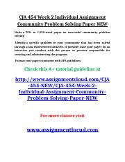 CJA 454 Week 2 Individual Assignment Community Problem Solving Paper NEW