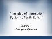 Principles of Information Systems chapter 09