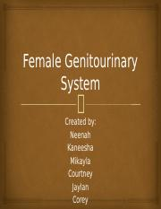 Female Genitourinary System final work group