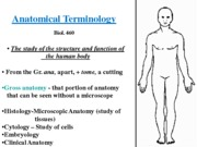 Anatomical terminology lecture