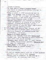 Chapter 4 Summary Notes