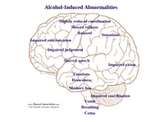 Alcohol-Induced Abnormalities