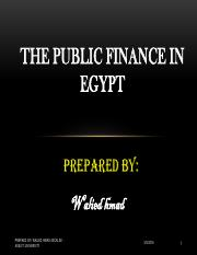 public-finance-in-egypt-by-walied-hmad