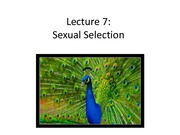 Lecture 7 Sexual Selection