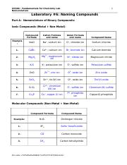 Ch100-Lab06-nomenclature-f07-key.doc