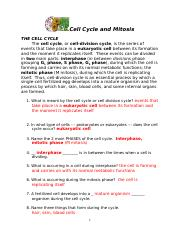 ANSWERS Cell Cycle and Mitosis 2015 - Name_KEY Per Date ...