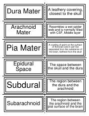 Module 12 Flashcards Part 2