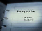 farriery_and_feet