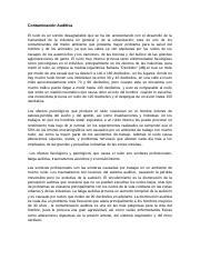 Contaminación Auditiva.docx