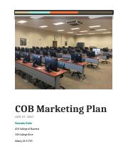 Individual Marketing Plan.docx