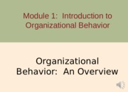 1 Organizational Behavior - An Overview Part 1(1)
