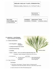 1 Nov 2013 - Seedless vascular plants