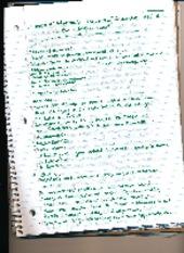 Diplomacy Notes