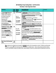 MKT2283 Project Grading Rubric Presentation.docx