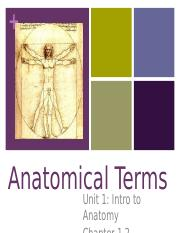 NOTES_Anatomical_Terms_KD11