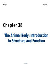 ch38_lecture.ppt