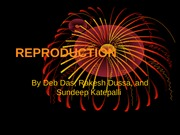 7-8_Reproduction