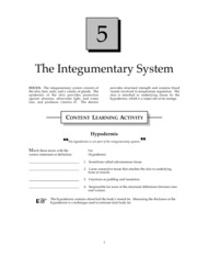 Integumentary System Study Guide