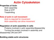 Handout 5 - Actin and Cell Movement