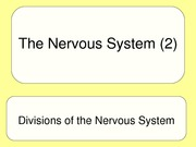 The Nervous System (2)