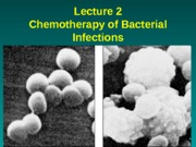 Lecture 2 Chemotherapy-2015