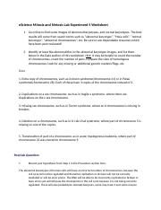 eScience Mitosis and Meiosis Lab Experiment 5 Worksheet.docx