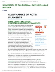 Chapter 6.2 Dynamics of actin filaments - WebCOM™ 2